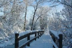 snowybridgethumb